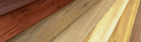 Full line lumber yard